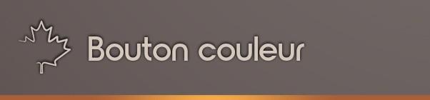 Bouton couleur